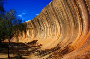 Wave Rock Tours